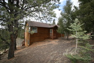 25 Blue Mesa Terrace Divide CO, 80814