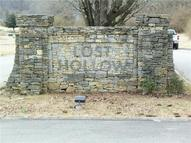 0 Lost Hollow Ln Ashland City TN, 37015