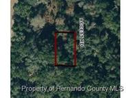 0 Treiman Blvd Ridge Manor FL, 33523