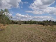 133 Acres Skipperville Road Ozark AL, 36360