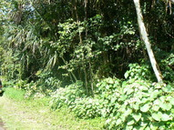 Lot 27 North Oopu Street Pahoa HI, 96778