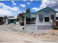 10795 Cr 197a 19 Nathrop CO, 81236