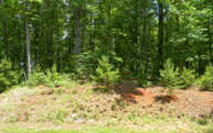 Lot20 Creekmont Crossing Lot 20 Mineral Bluff GA, 30559