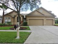 19812 Sunsplash Lane Lutz FL, 33558