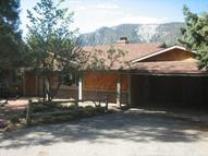 1225 Rivera Drive Wrightwood CA, 92397