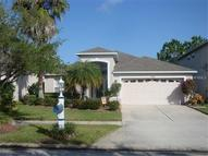 19230 Fishermans Bend Drive Lutz FL, 33558