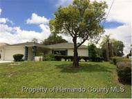 2204 Whitewood Ave Spring Hill FL, 34609