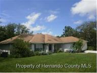 270 Planter Rd Spring Hill FL, 34606
