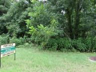 Lot 25 Island Blvd. 25 Waterfront Missouri City TX, 77459