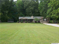 246 Wilson Mountain Road Falkville AL, 35622