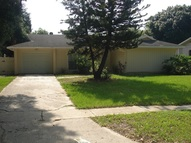 6803 Cresthill Ct. Tampa FL, 33615
