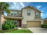 15610 Starling Water Dr Lithia FL, 33547