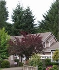 5029 Chamber Creek Loop Se Olympia WA, 98501