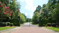 Lot 58 Sorrell Red Court Warrenville SC, 29851