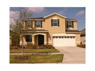 8718 Turnstone Shore Ln Riverview FL, 33578