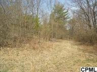 Lot 8 Shuler Road Shermans Dale PA, 17090