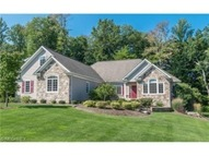 11780 Jamie Dr Painesville OH, 44077