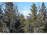 5 Silver Spur Way Pine CO, 80470