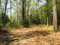 Lot 3a Riverview Park Dr Pocomoke City MD, 21851
