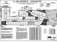 Lot 35 Laurel Oaks Drive Freeport FL, 32439