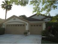 10215 Timberland Point Dr Tampa FL, 33647