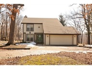 21191 Lisa Lane Steger IL, 60475