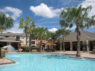 Sedona, The Apartments Tampa FL, 33635