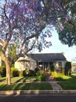 1490 Glenville Dr Los Angeles CA, 90036