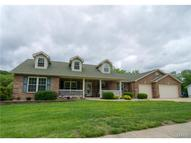 6451 Mill View Drive Byrnes Mill MO, 63051