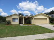 15802 Wheatfield Place Tampa FL, 33624