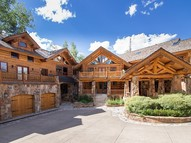 133 Polecat Lane Mountain Village CO, 81435
