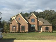 6393 Chippewa Drive Olive Branch MS, 38654