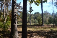 Lot 9 Tugaloo State Park Road Lavonia GA, 30553