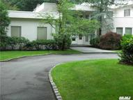 10 Wildwood Dr Kings Point NY, 11024