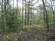 Lot 2 Rag Valley Road Lamar PA, 16848