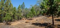 Custom Homesite 333 Meadow Vista CA, 95722