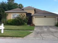 1134 Vinetree Drive Brandon FL, 33510