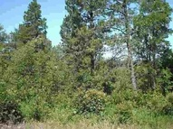 Tract 21a Pasque Loop Spearfish SD, 57783