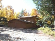203 Smoky Lake Dr Iron River MI, 49935