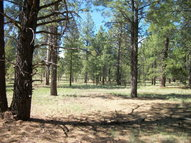 Pcls3d-S Coconino Forest Rd 867 Flagstaff AZ, 86001