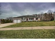 3283 Forest Overlook Dr Seven Hills OH, 44131