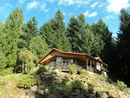 138 Red Cedar Lane Packwood WA, 98361