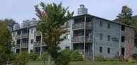 106 Ash Lodge Davis WV, 26260