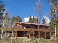 34 Beaver Creek Court Lake George CO, 80827