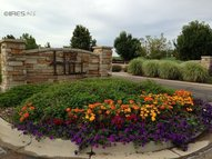 3431 Taliesin Way Fort Collins CO, 80524