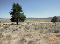 20 Acre Buckmaster Bly OR, 97622