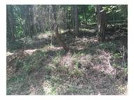 Lot 26  Robinhood Road Asheville NC, 28804