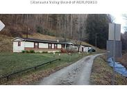 31 Bear Wallow Ranger WV, 25557
