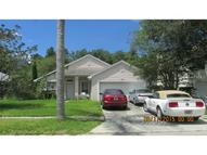 4904 Ridgemoor Circle Palm Harbor FL, 34685