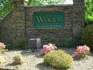Lot 20 The Woods At Lake Keowee West Union SC, 29696